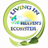 living_heavens_ecosystem.jpg jesuslifetogether.com