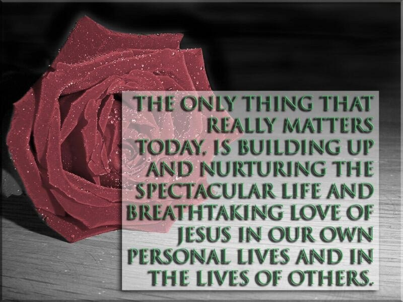 Nurturing Spectacular Life