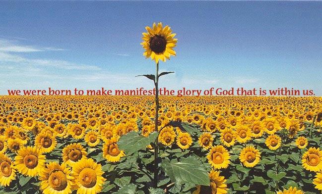 Born to Make Manifest