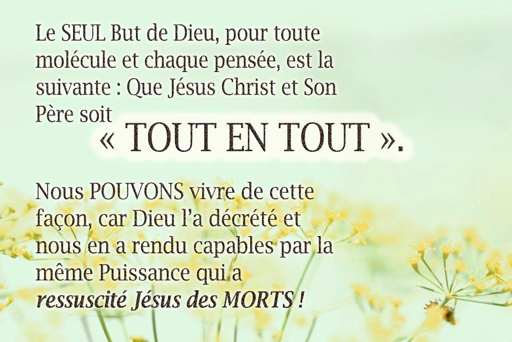 « Le Dessein de Dieu MAINTENANT, par l'Eglise... » (Eph 3 :10)