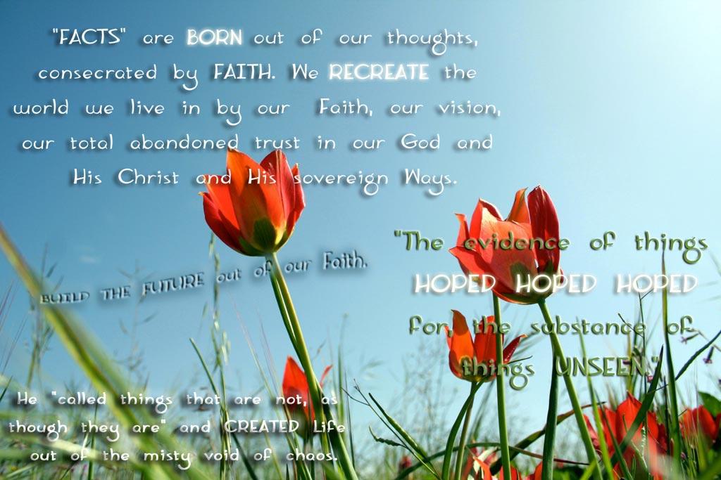 Recreated Life...re-Creation God's Way :)